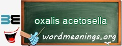 WordMeaning blackboard for oxalis acetosella